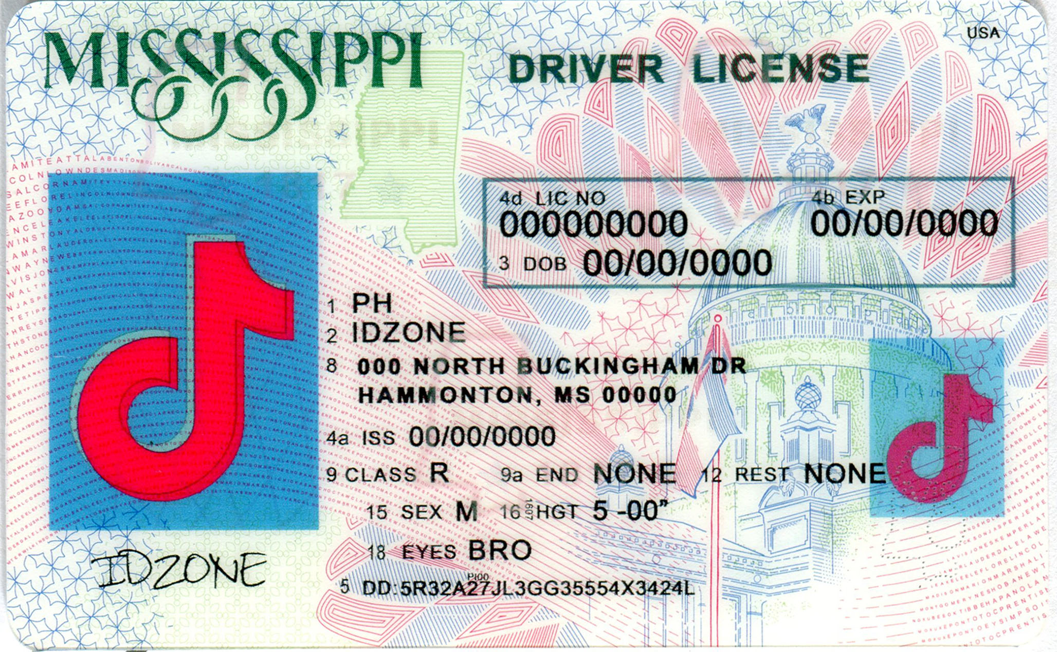 MISSISSIPPI-New fake id