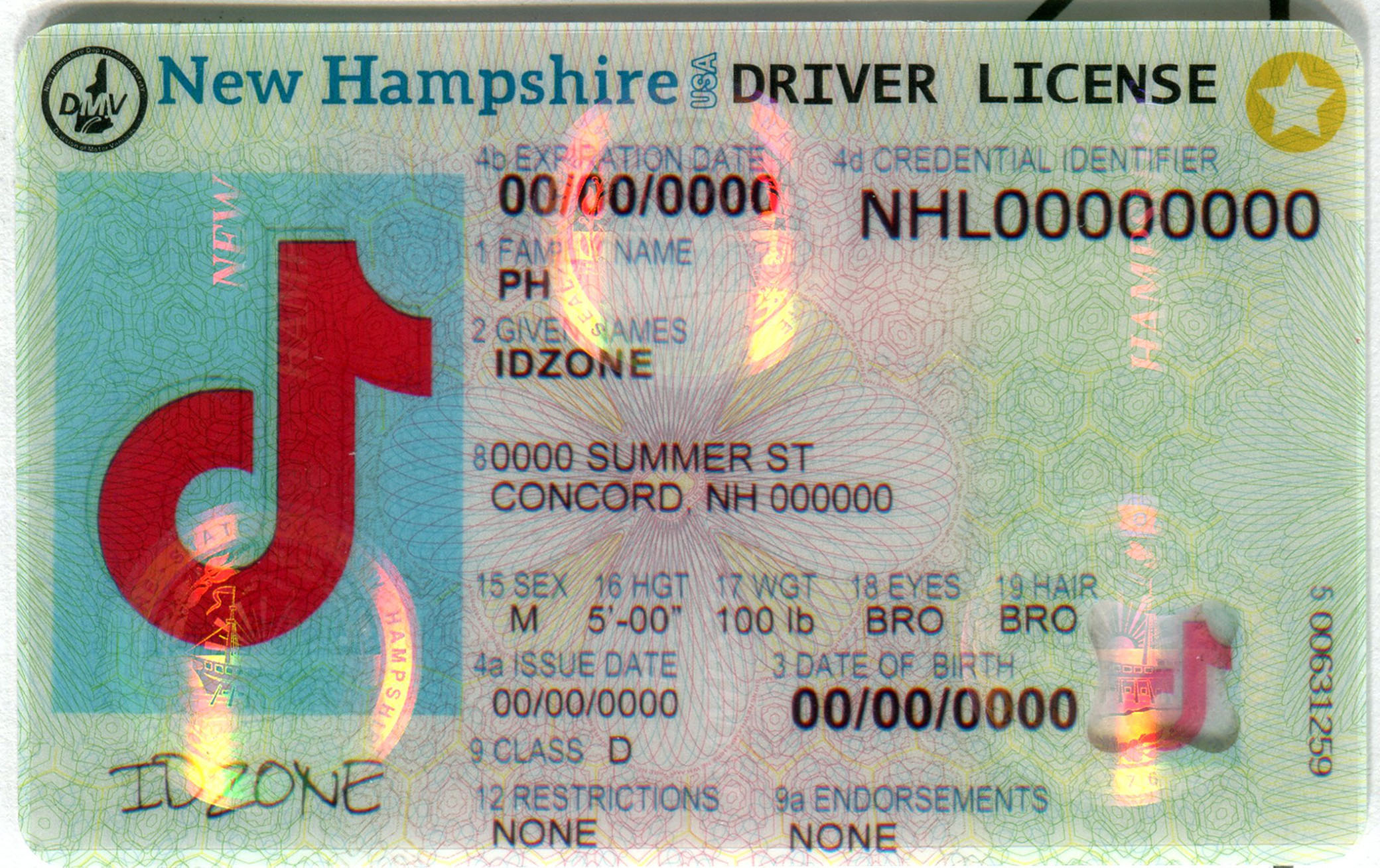 NEW HAMPSHIRE Scannable fake id