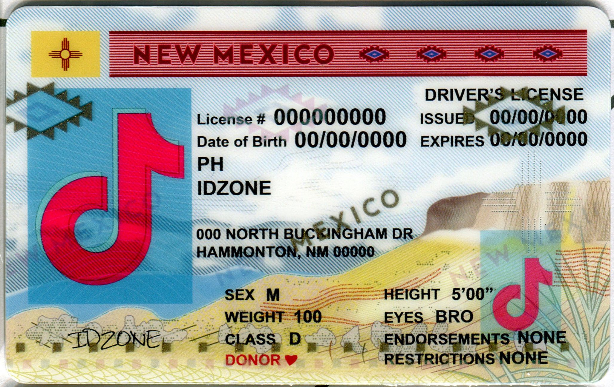 NEW MEXICO Scannable fake id