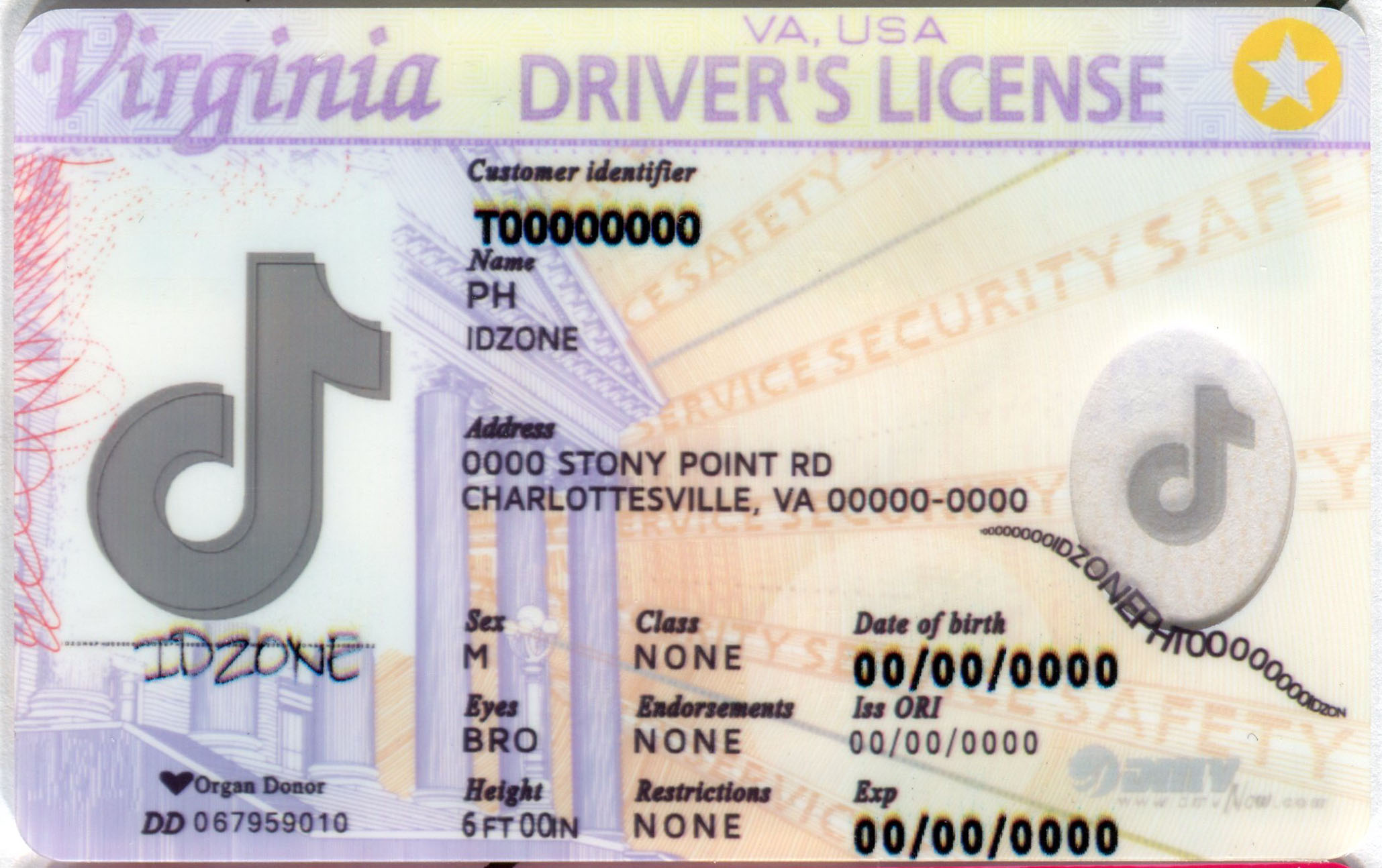 VIRGINIA Scannable fake id
